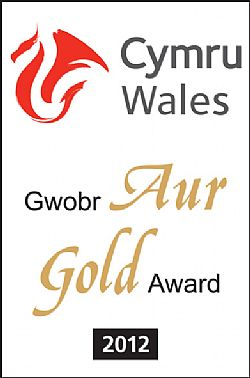 13 Years of Gold Awards for Tan yr Onnen 2009-2021